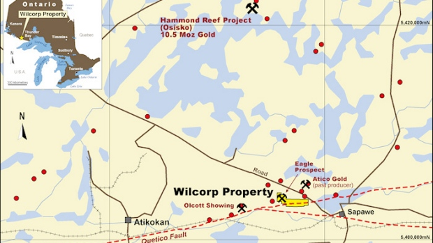 Wilcorp Project